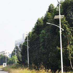 广州南沙风光互补路灯工程